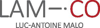 Luc-Antoine Malo – coach